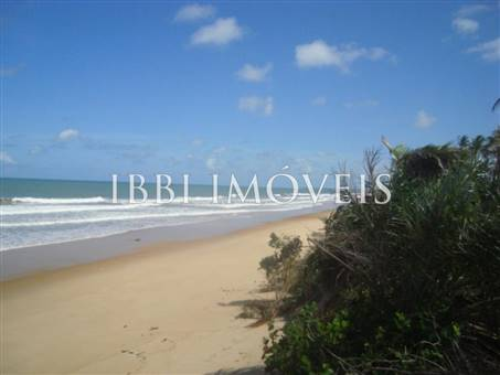Beautiful 3,000m² site Foot In The Sand With Wide Area In Mogiquiçaba 11
