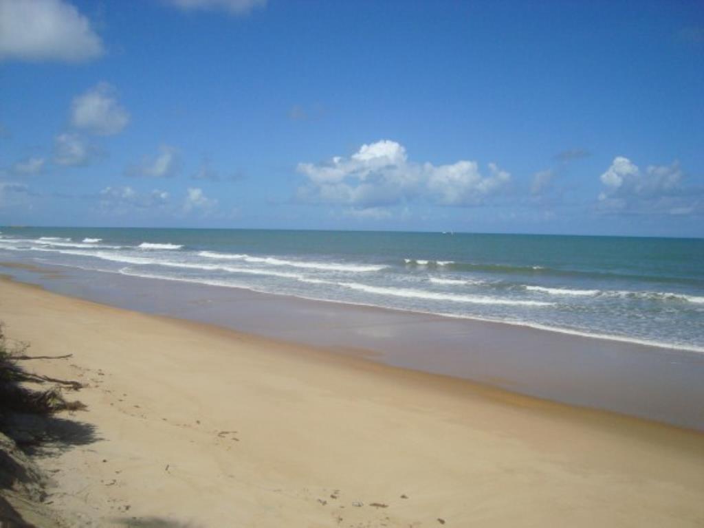 Belíssimo Sítio De 3.000M² Pé Na Areia Com Extensa Área Em Mogiquiçaba 13