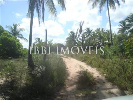 Beautiful 3,000m² site Foot In The Sand With Wide Area In Mogiquiçaba 14