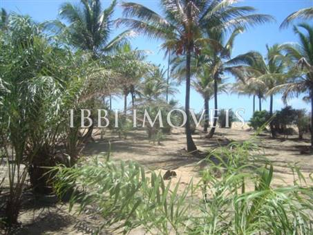 Beautiful 3,000m² site Foot In The Sand With Wide Area In Mogiquiçaba 2