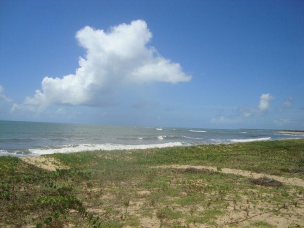 Belíssimo Sítio De 3.000M² Pé Na Areia Com Extensa Área Em Mogiquiçaba 5
