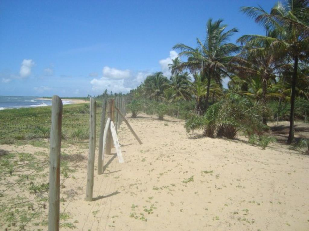 Beautiful 3,000m² site Foot In The Sand With Wide Area In Mogiquiçaba 6