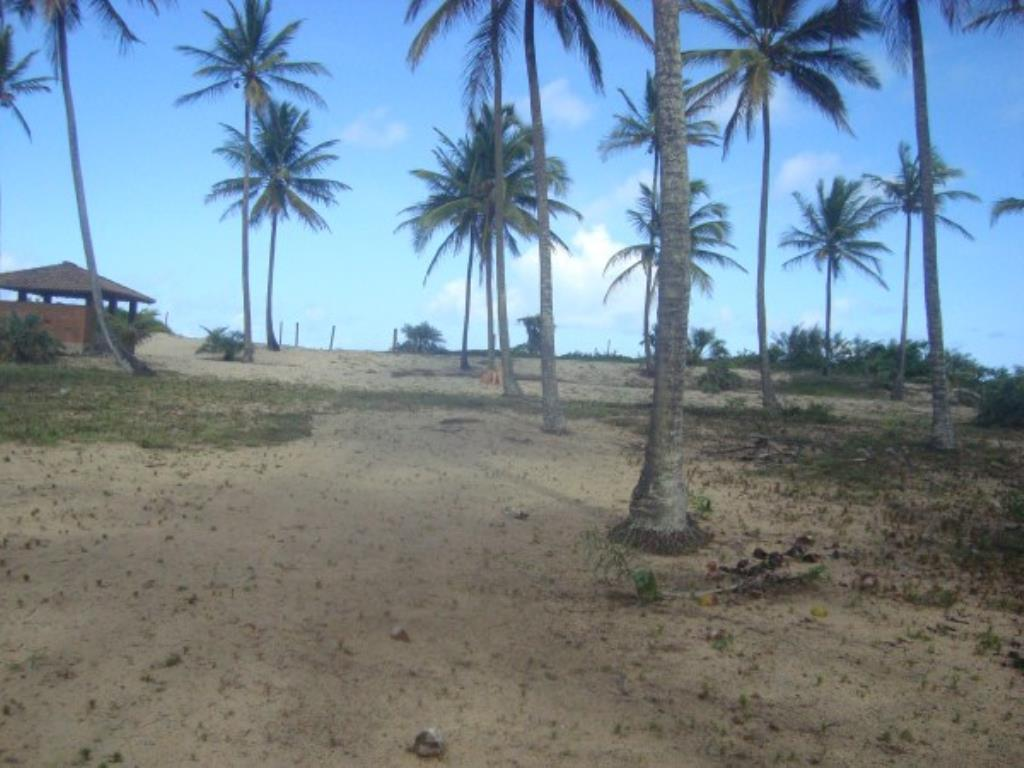 Beautiful 3,000m² site Foot In The Sand With Wide Area In Mogiquiçaba 9