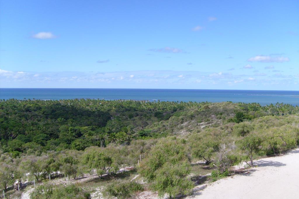 Belo Terreno Frente Á Mar  1