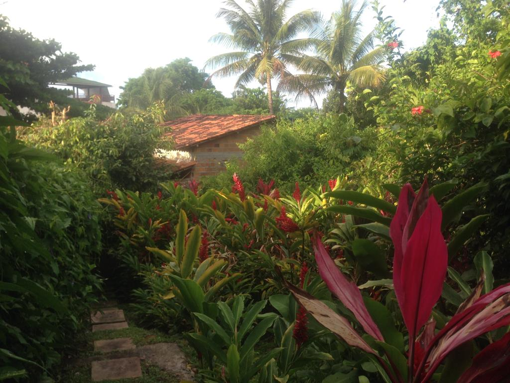 House 200M From The Sea Beach At Gamboa 11