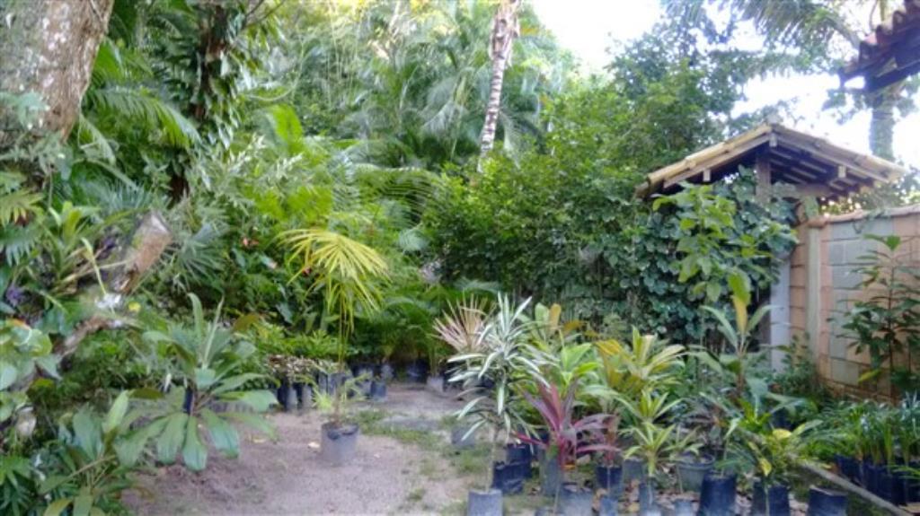 Casa Com Vista Total Para O Mar E Grande Área Verde Em Ba 15