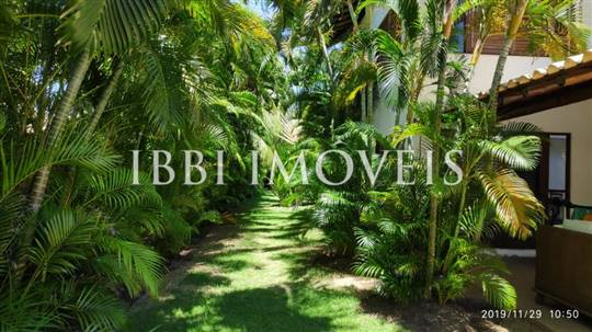 House Of 5/4 Bromeliads Reserve Imbassai 4