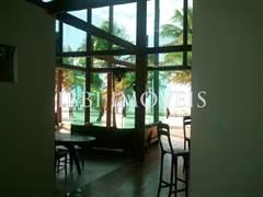 Casa De Luxo Em Ilha Paradisíaca 3