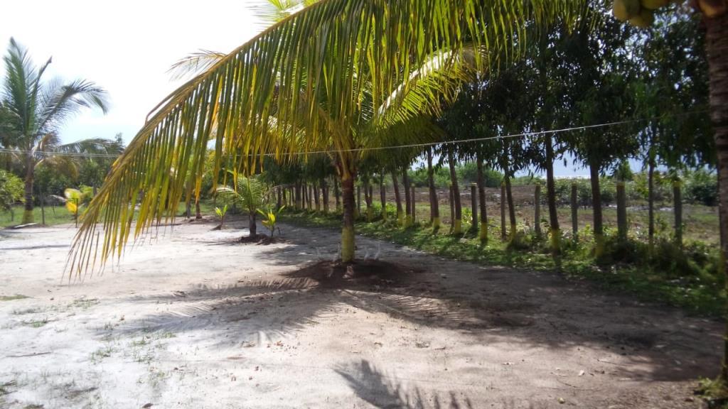 House Near Beach 10