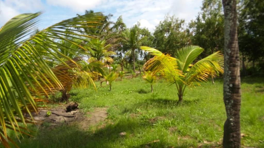 House Near Beach 12