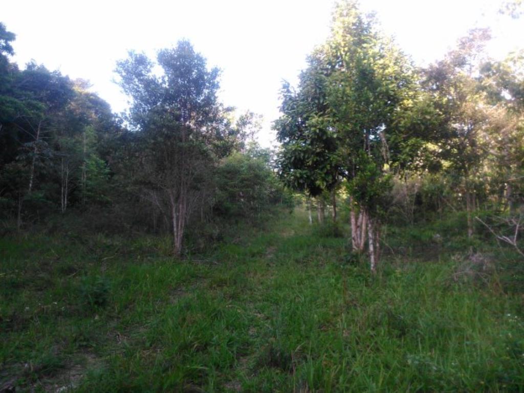 Chácara Em Local Nobre De Próximo Ao Aeroporto E Ao Condomínio Terra Vista Na Beira Da Pista Ba001 11