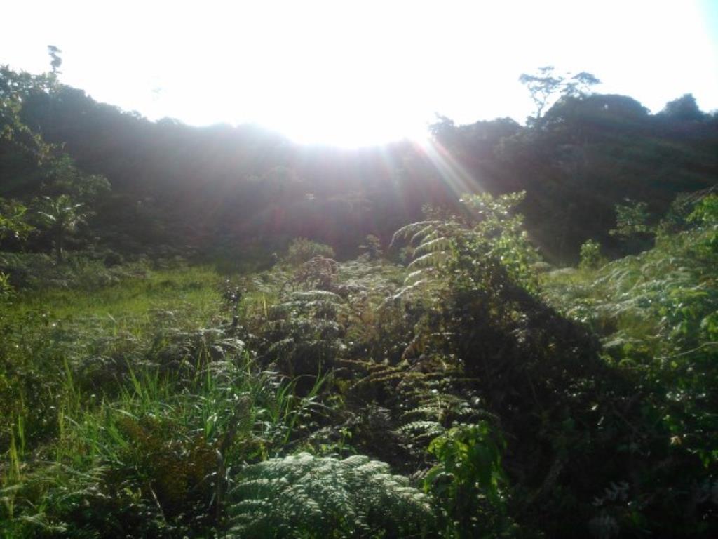 Chácara Em Local Nobre De Próximo Ao Aeroporto E Ao Condomínio Terra Vista Na Beira Da Pista Ba001 7