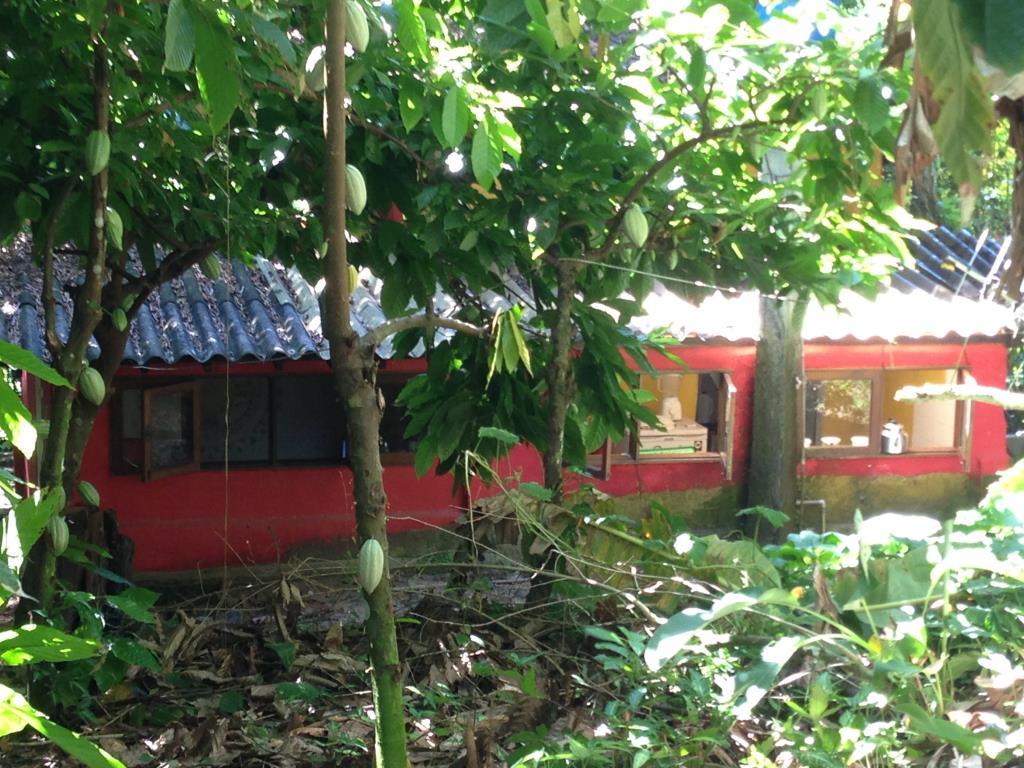 Chalé Em Local Arborizado 12