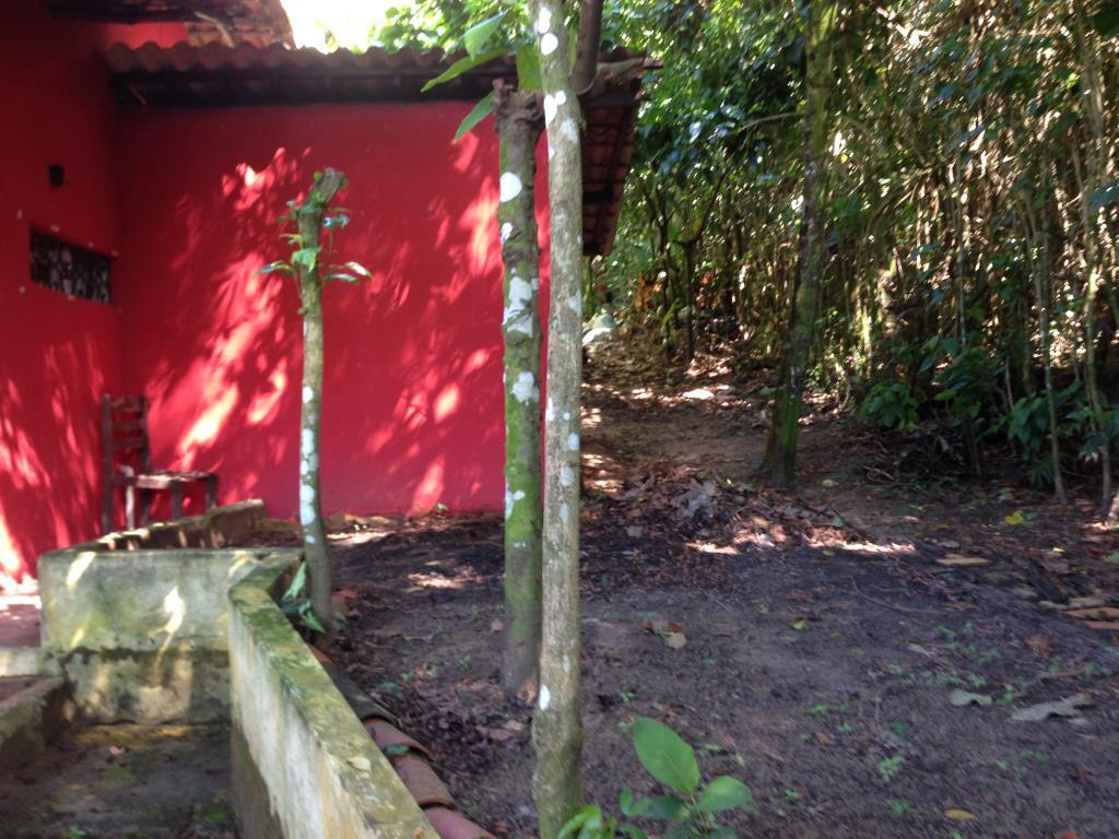 Chalé Em Local Arborizado 9