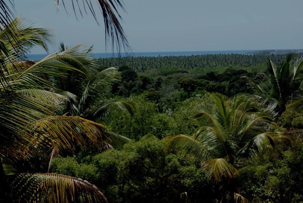 Charmosa Chácara Arborizada 3