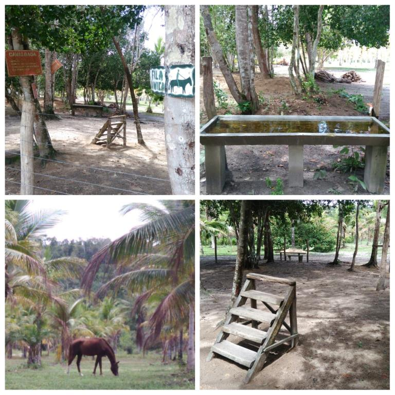 Comunità Gated Altos De Mãe Tereza 10
