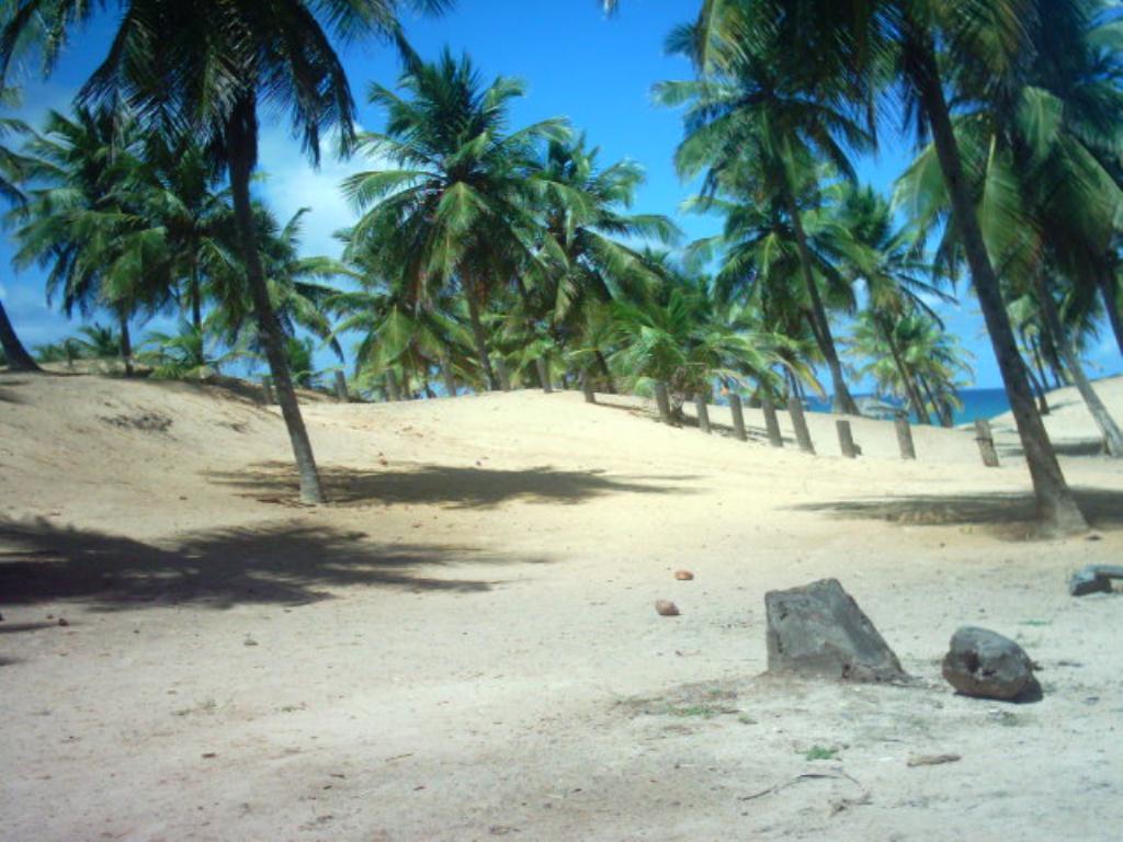 Large Lot Beira Mar 3