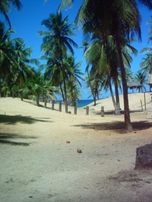 Large Lot Beira Mar 2