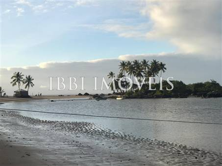 Excellent Land 200M From The Sea 3