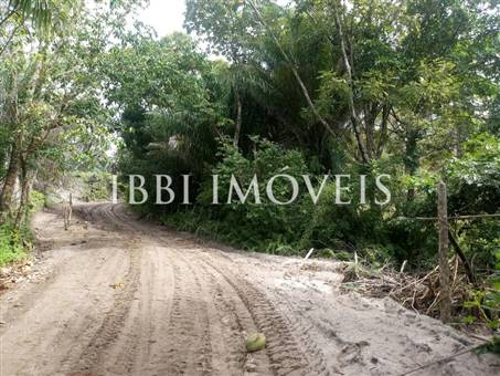 Excellent Land Of 1350M In Morere 13