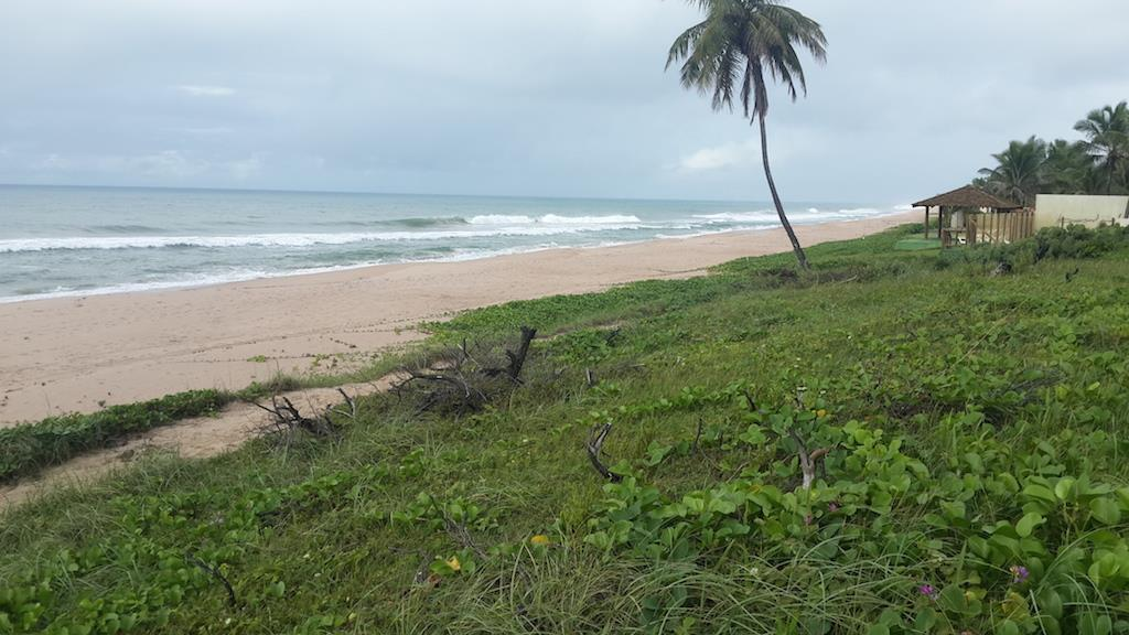 Excellent Land Ocean Front 7