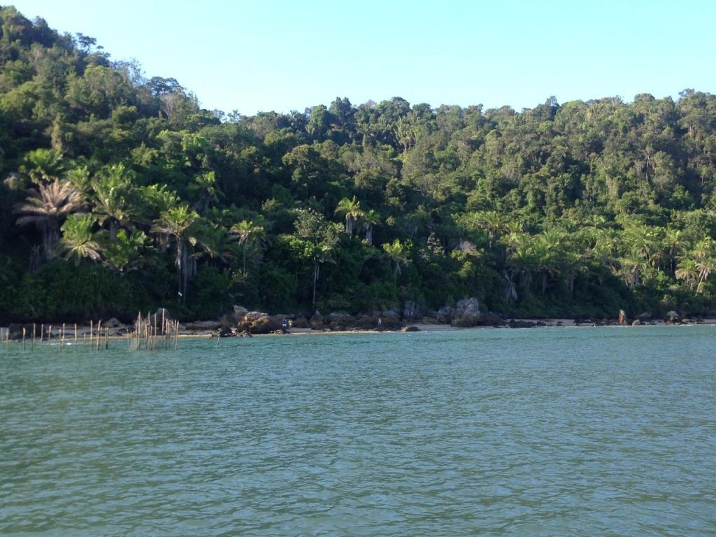 Eccellente Ocean Front Land 1