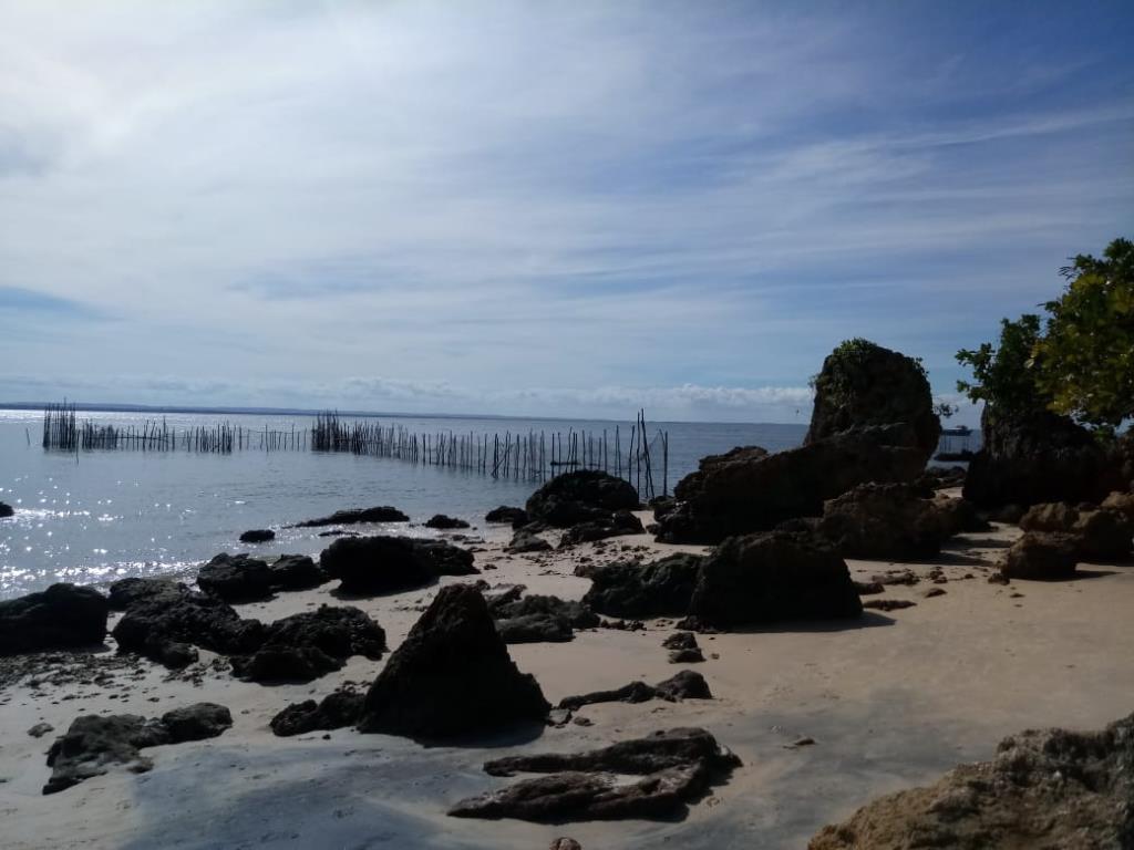 Eccellente Ocean Front Land 11