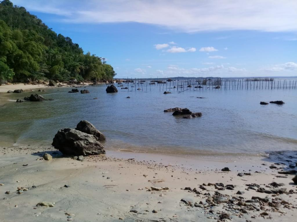 Eccellente Ocean Front Land 12