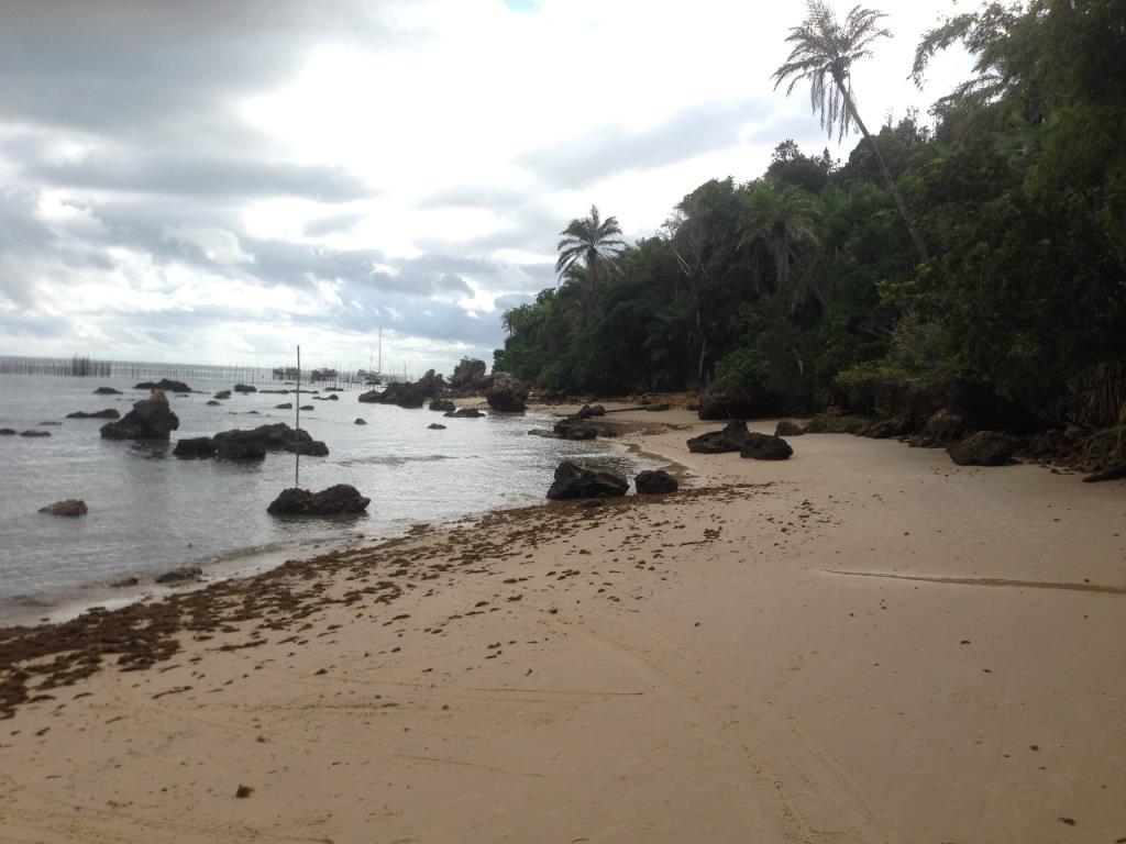 Excellent Ocean Front Land 4