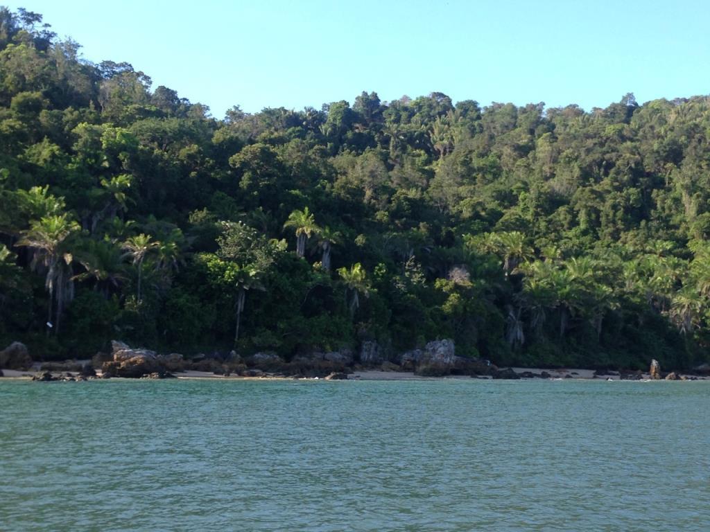 Excellent Ocean Front Land 5