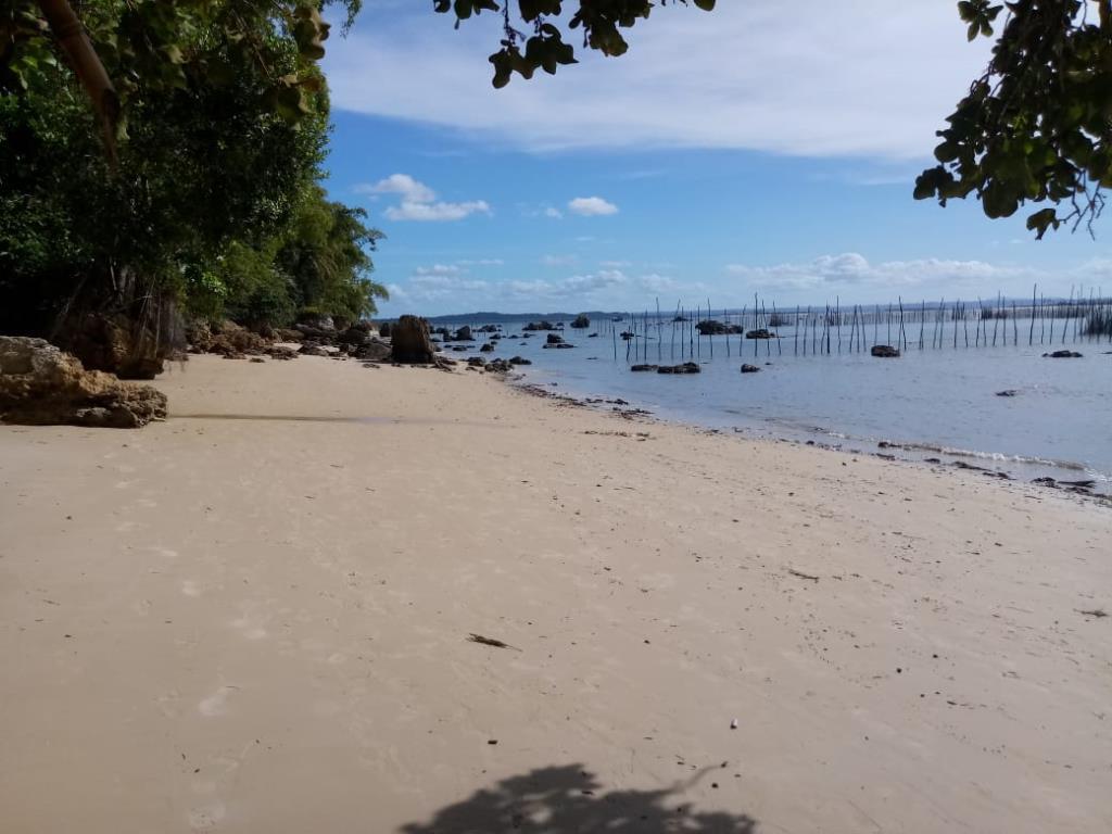 Excellent Ocean Front Land 6
