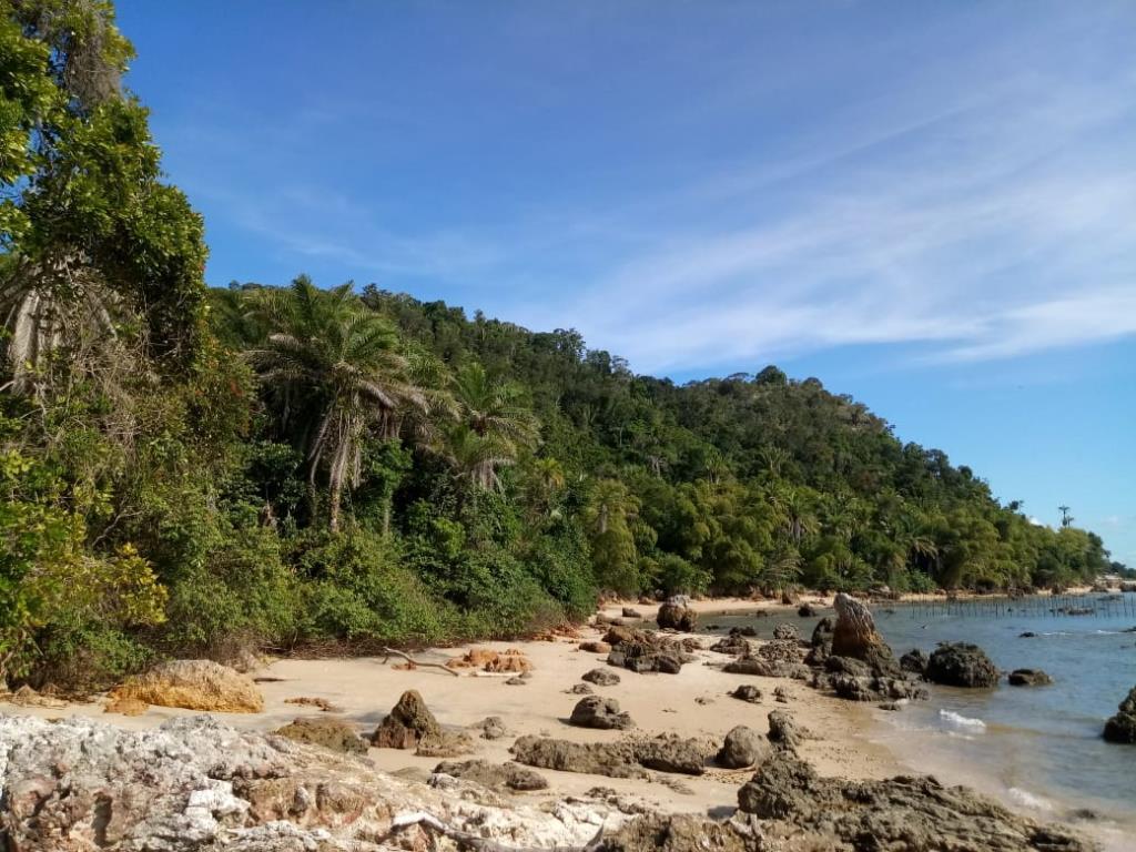 Eccellente Ocean Front Land 7