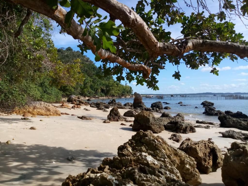 Eccellente Ocean Front Land 9