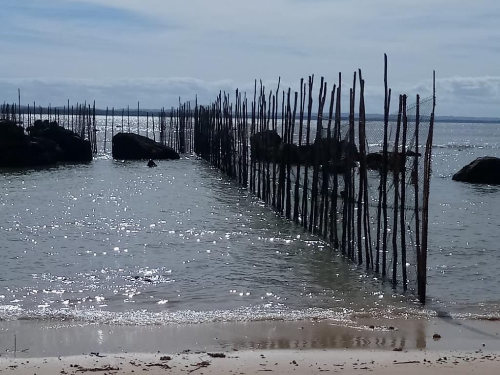 Excellent Ocean Front Land 14