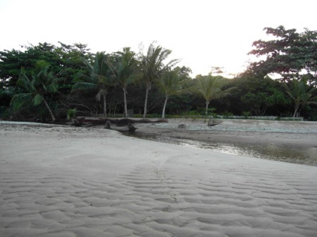 Fantastic Ocean Front Property 2