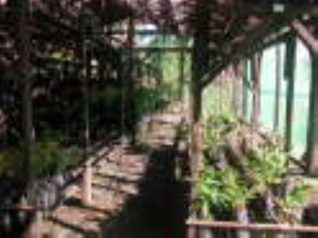 60ha farm with sea view in Ilheus 9
