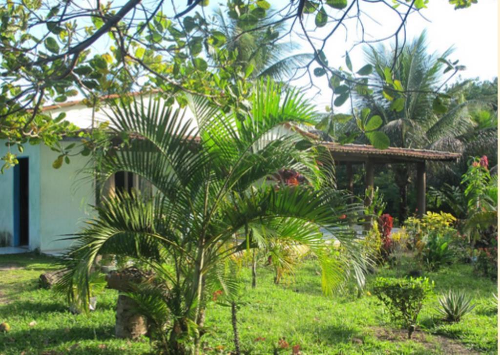Fazenda Com 54 Hectares Próximo À Praia 7