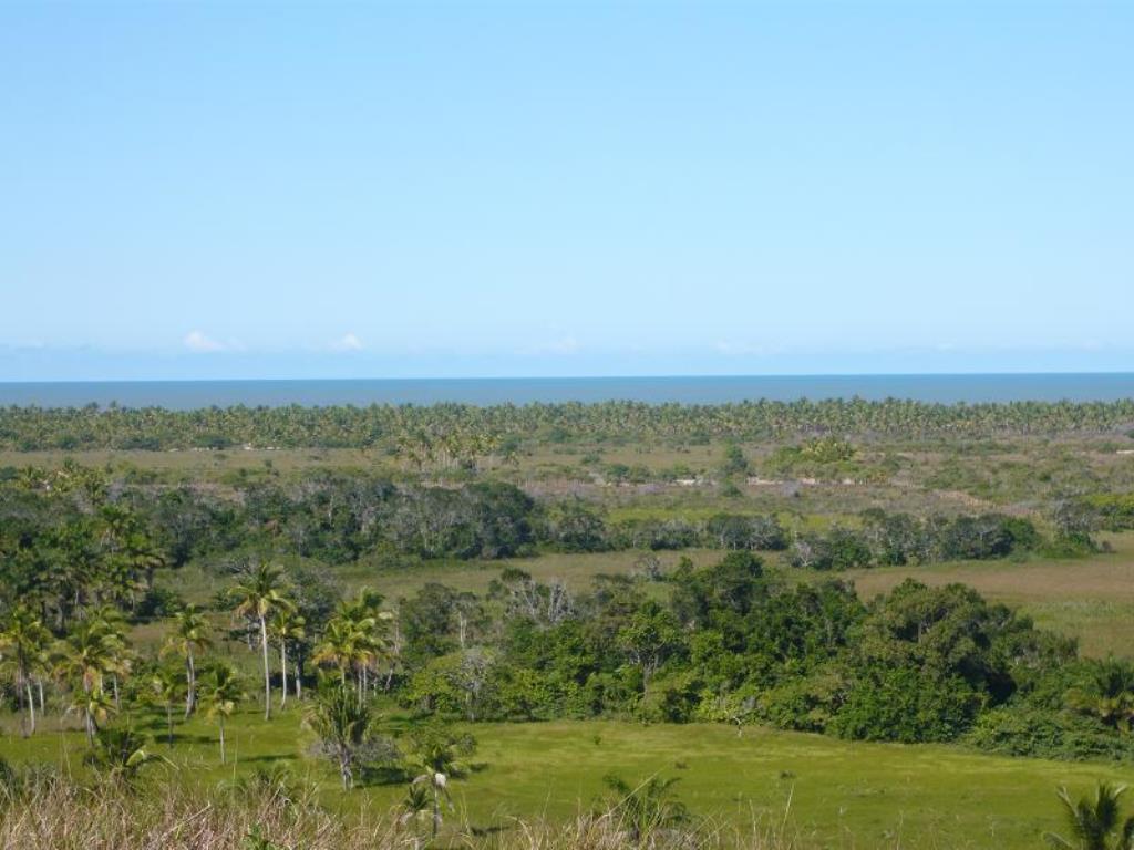 Fazenda De 35Ha Em Com Vista Mar, Rio E Estrutura Completa 6