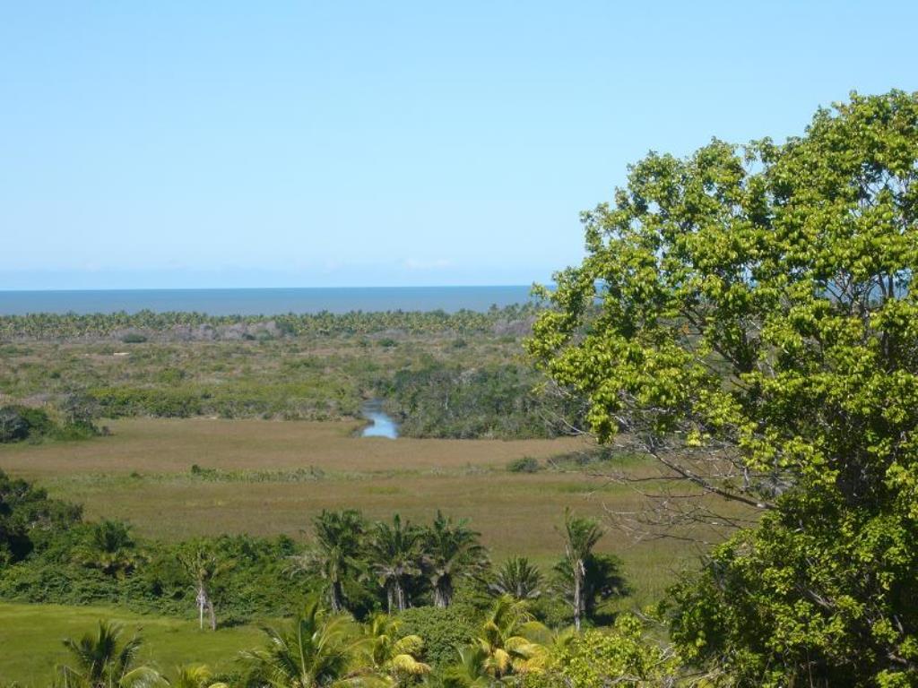 Fazenda De 35Ha Em Com Vista Mar, Rio E Estrutura Completa 7