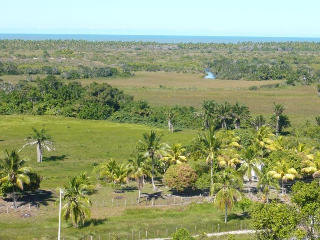 Fazenda De 35Ha Em Com Vista Mar, Rio E Estrutura Completa 9
