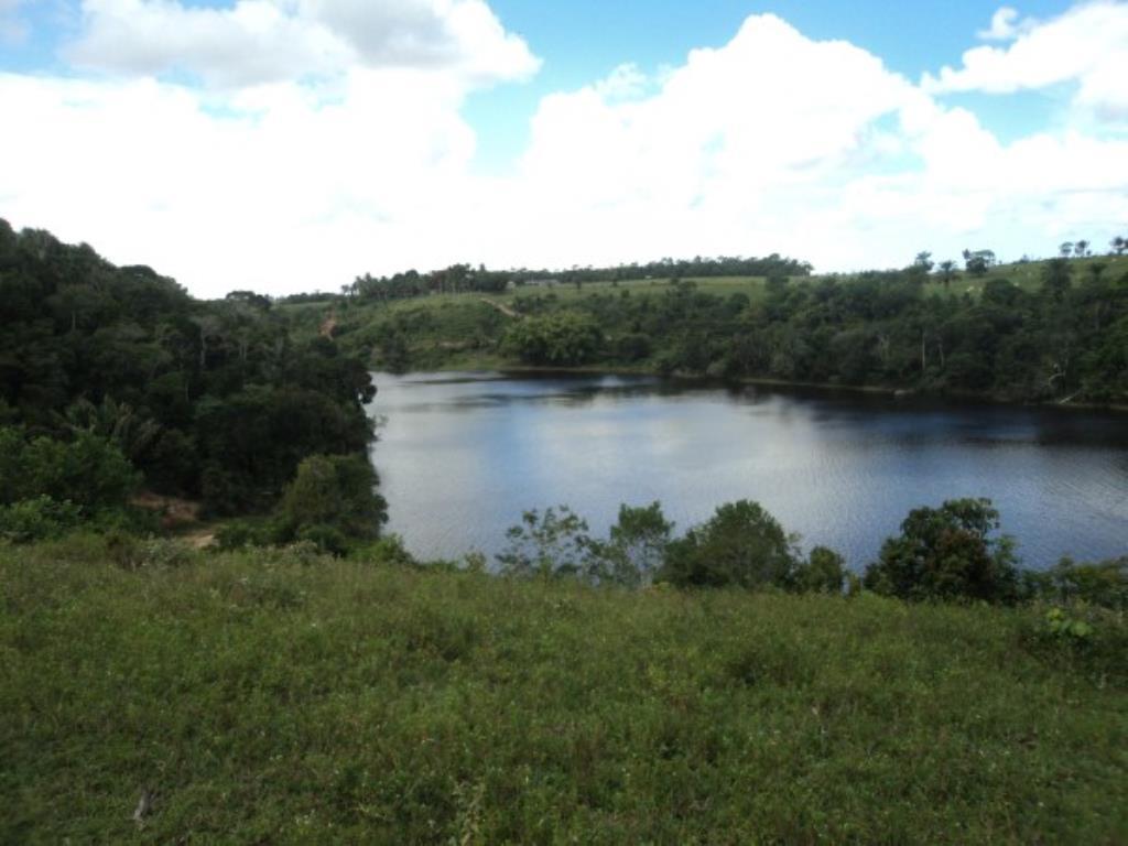 Fazenda Região De Com 5720 Ha Super Estruturada Para Pecuária; Rica Em Água Corrente E Com Várias Lagoas E Rio Com Barragens 1
