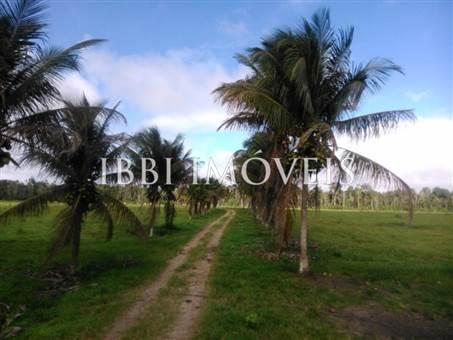 Fazenda Região De Com 5720 Ha Super Estruturada Para Pecuária; Rica Em Água Corrente E Com Várias Lagoas E Rio Com Barragens 14