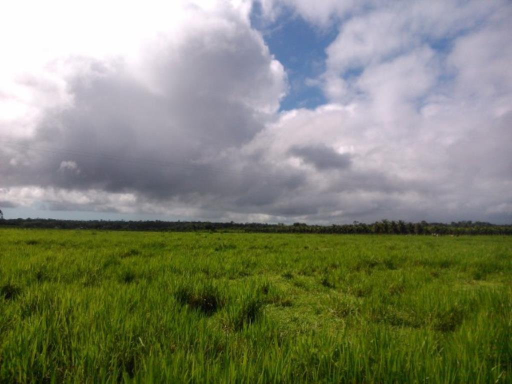 Fazenda Região De Com 5720 Ha Super Estruturada Para Pecuária; Rica Em Água Corrente E Com Várias Lagoas E Rio Com Barragens 2