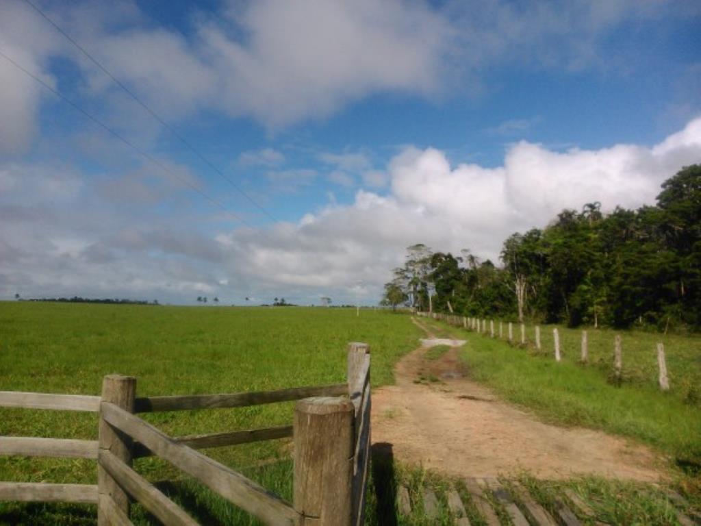 Fazenda Região De Com 5720 Ha Super Estruturada Para Pecuária; Rica Em Água Corrente E Com Várias Lagoas E Rio Com Barragens 3