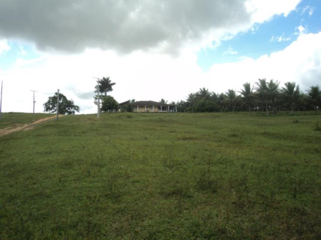 Fazenda Região De Com 5720 Ha Super Estruturada Para Pecuária; Rica Em Água Corrente E Com Várias Lagoas E Rio Com Barragens 9
