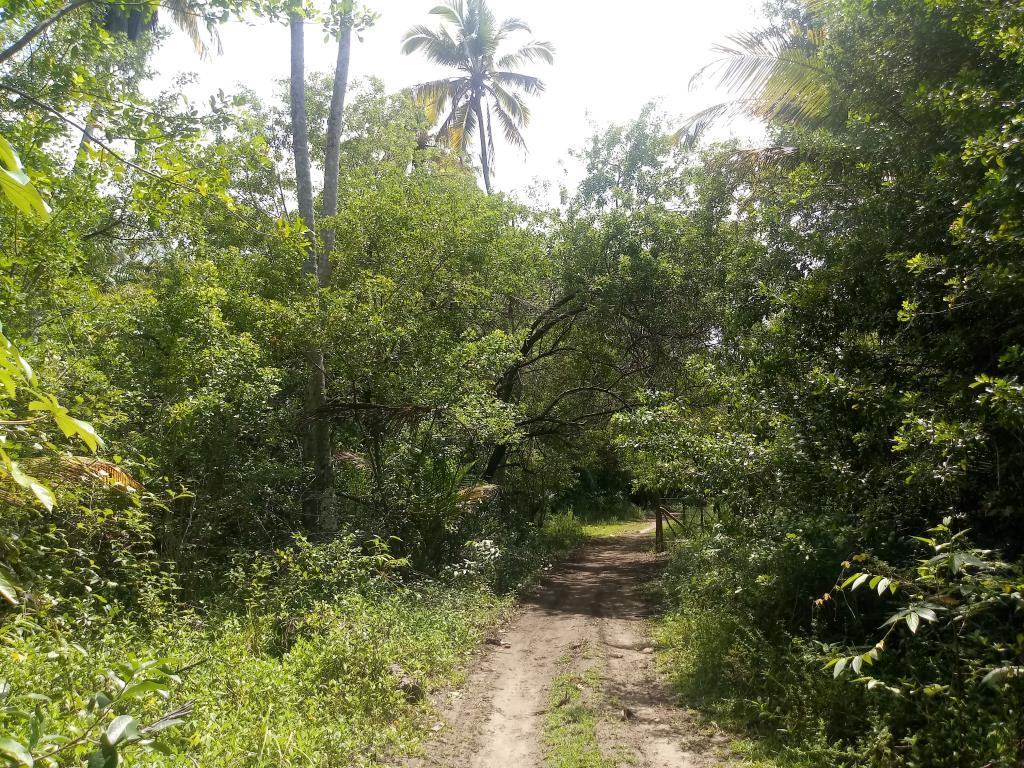 Garapuá Paradise 6