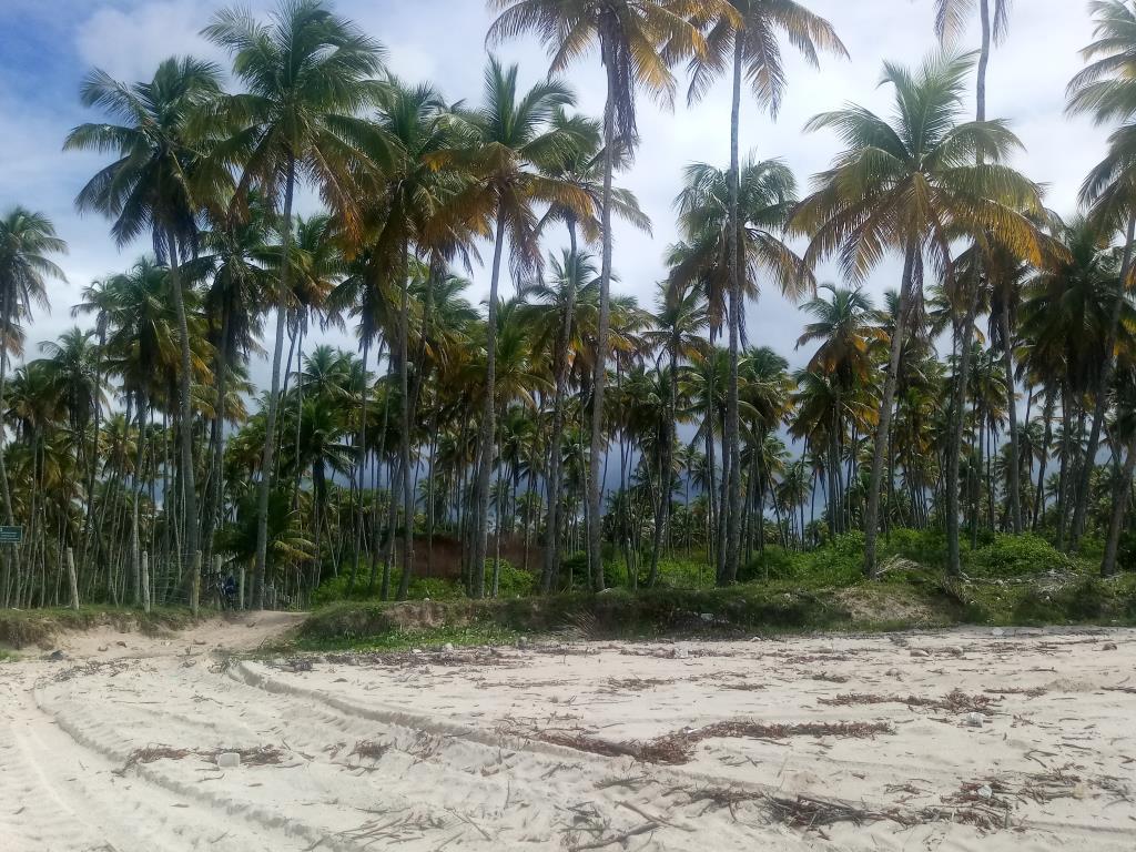 Garapuá Paradise 9