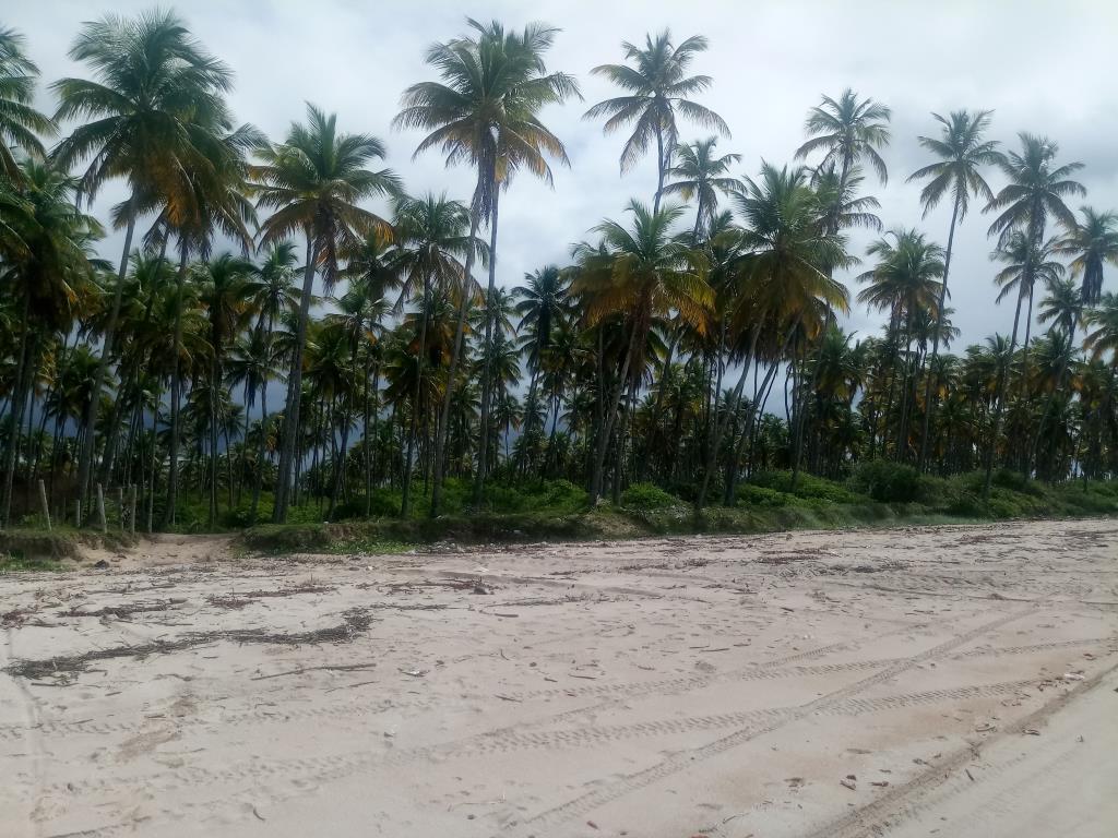 Garapuá Paradise 13