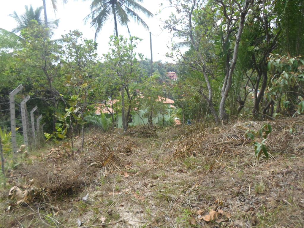 Great Commercial Land With Amazing View To The Sea 4