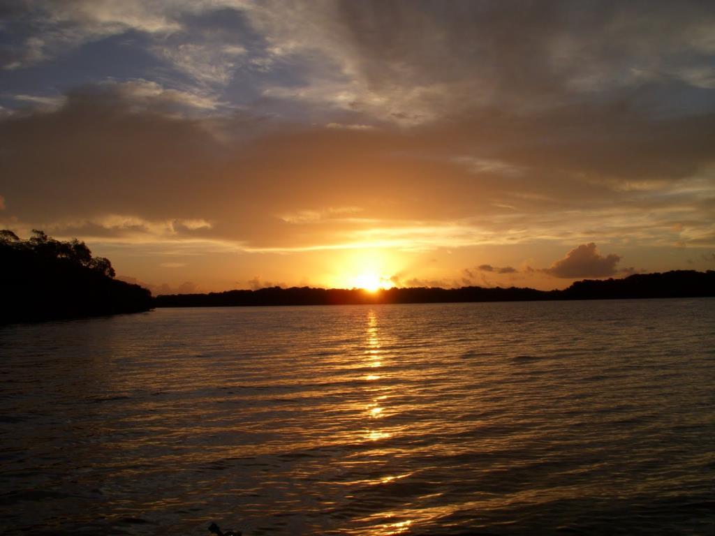 Imensa Ilha Península-Ideal Para Projetos Ecológicos 3